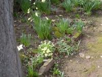 00110-Easter_2010_010.jpg