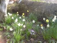 00040-Louise_40_Spring_021.jpg