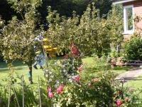 00040-Garden_Aug_10.jpg