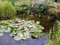 00150-Sept_garden_024.jpg
