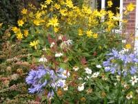 00170-Sept_garden_012.jpg